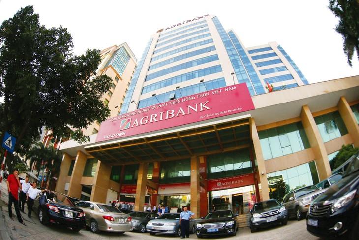 Agribank đã nhiều lần rao bán khoản nợ của Doanh nghiệp tư nhân Thanh Tùng với mức giá liên tục giảm nhưng không thành công. Ảnh: Lê Tiên