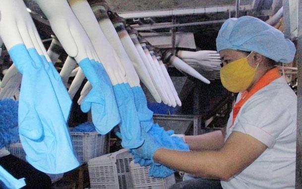 Gói thầu Mua sắm găng tay y tế của Bệnh viện Đa khoa Lâm Đồng năm 2021 lựa chọn nhà thầu qua mạng. Ảnh minh họa: Nguyễn Ánh