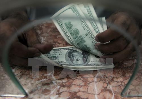 Giá USD tại Vietcombank hôm nay 4/6 tăng 10 đồng. Ảnh: TTXVN