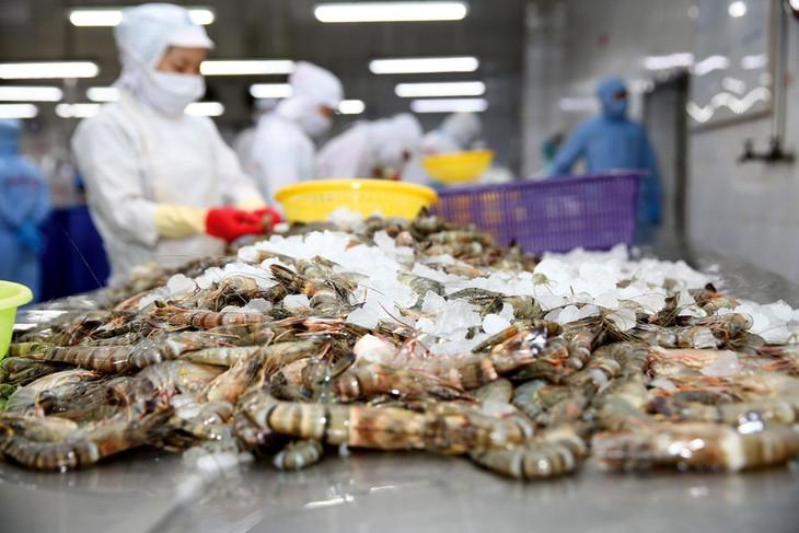 Giá vốn của mảng thủy sản tăng đột biến trong năm 2020 là một trong những nguyên nhân khiến Công ty CP Thủy sản số 4 thua lỗ. Ảnh: Nhã Chi
