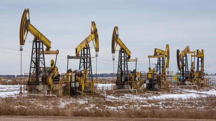 Giá dầu bật tăng nhờ lực mua bắt đáy sau phiên giảm sốc