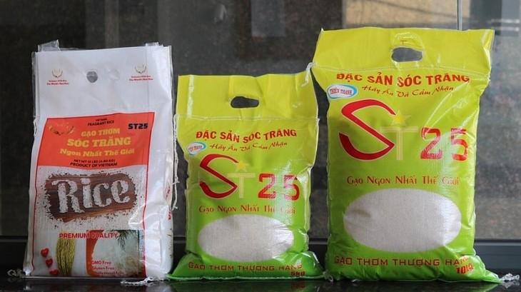 Gạo ST24, ST25 được thế giới ưa chuộng