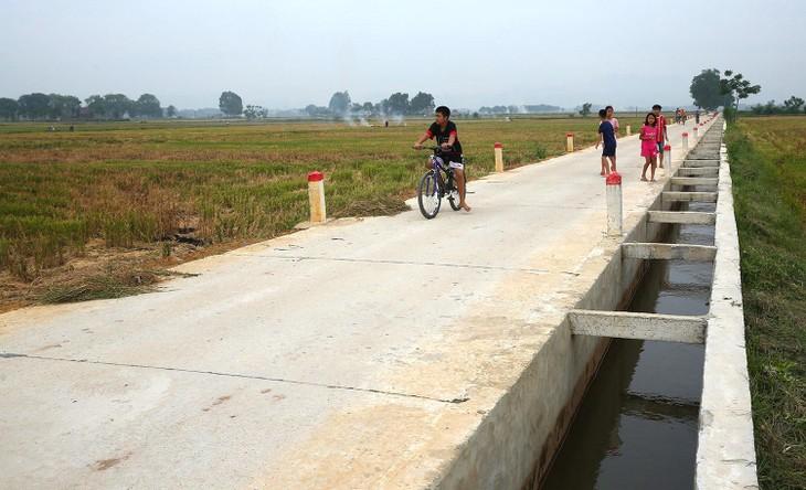 Nhiều gói thầu quy mô nhỏ tại huyện Ia Pa (tỉnh Gia Lai) có hồ sơ mời thầu yêu cầu hợp đồng tương tự với giá trị xấp xỉ hoặc bằng giá gói thầu. Ảnh minh họa: Tiên Giang