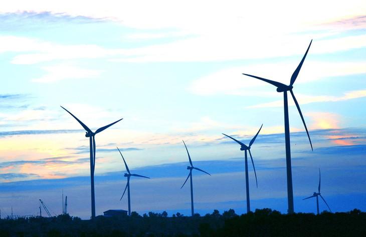 Tính đến ngày 22/7/2021, có 61 nhà máy điện gió với tổng công suất 3.487,8 MW gửi công văn đăng ký thử nghiệm, công nhận ngày vận hành thương mại theo đúng quy định. Ảnh: Lê Tiên