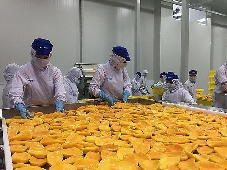 Nga tăng nhập khẩu rau quả chế biến từ thị trường Việt Nam