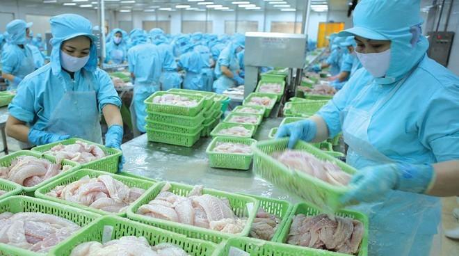 Xuất khẩu thủy sản trong tháng 3/2020 của Việt Nam giảm gần 20% so với cùng kỳ năm 2019 (ảnh: Internet)