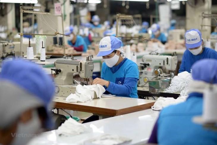 Đăng ký mã số REX nhằm tạo thuận lợi cho doanh nghiệp Việt Nam xuất khẩu sang các thị trường Liên minh châu Âu, Thụy Sỹ, Na Uy để được hưởng chế độ ưu đãi thuế quan phổ cập (ảnh: internet)
