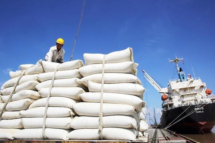 Gạo là một trong những mặt hàng được đẩy mạnh xuất khẩu vào thị trưởng EU kể từ khi EVFTA có hiệu lực. Ảnh: Internet