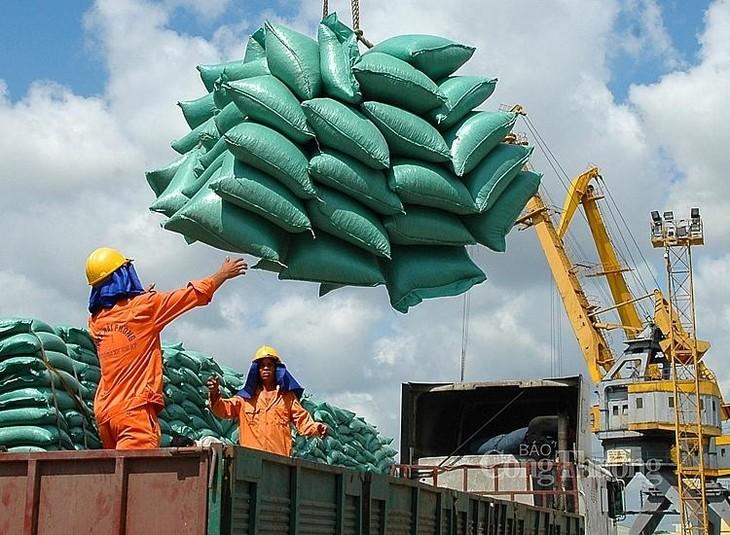 Cục Xuất nhập khẩu Bộ Công Thương nhận định, hoạt động xuất khẩu gạo sẽ gặp không ít khó khăn do cảng Tân Cảng Hiệp Phước phải ngừng dịch vụ do liên quan đến Covid-19 (ảnh: Internet)