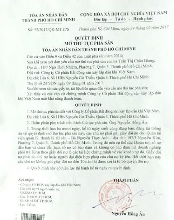 Tòa ra quyết định mở thủ tục phá sản đối với PVCLand ảnh 1