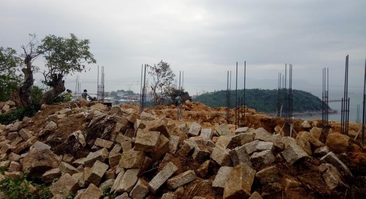 Chủ tịch TP. Đà Nẵng: Đình chỉ thi công dự án Khu du lịch sinh thái Biển Tiên Sa ảnh 2
