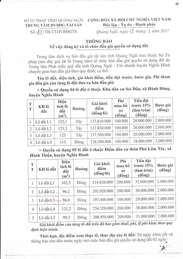 Đấu giá quyền sử dụng đất tại huyện Nghĩa Hành, Quảng Ngãi ảnh 1