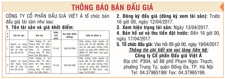Đấu giá quyền sử dụng đất tại huyện Yên Phong, Bắc Ninh ảnh 1