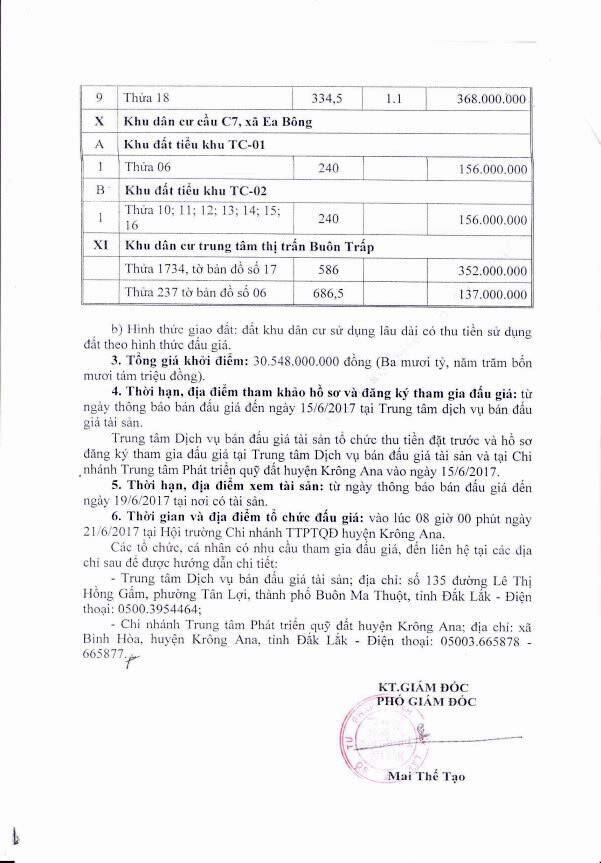 Đấu giá quyền sử dụng đất và tài sản trên đất tại huyện Krông Ana, Đắk Lắk ảnh 4