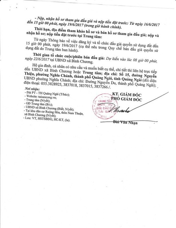 Đấu giá quyền sử dụng đất tại huyện Bình Sơn, Quảng Ngãi ảnh 2