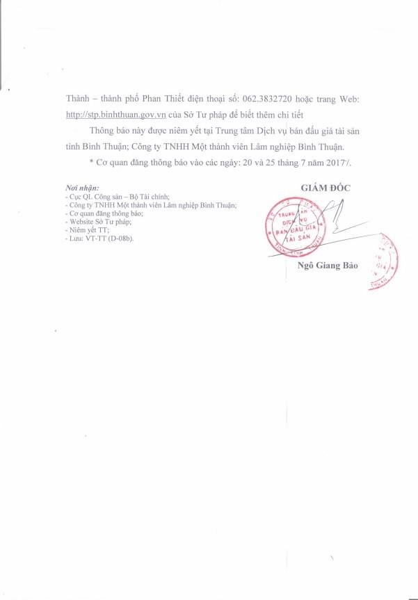 Đấu giá gỗ rừng trồng tại Bình Thuận ảnh 3