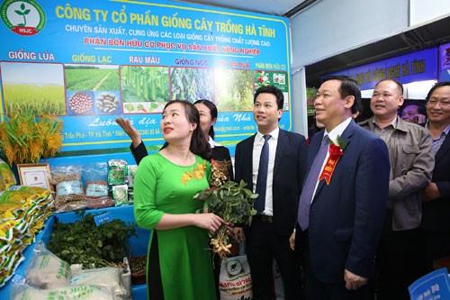 Phó Thủ tướng dự Lễ hội quảng bá cam Hà Tĩnh ảnh 1
