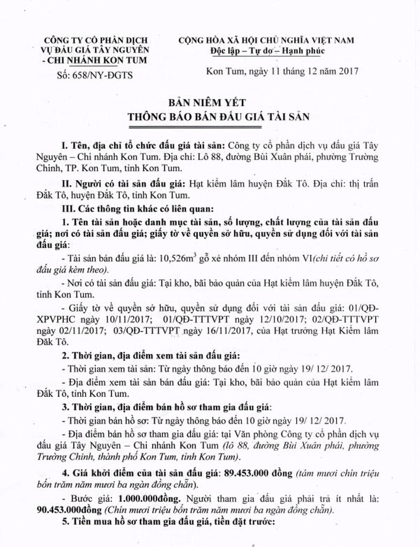 Đấu giá gỗ xẻ nhóm III đến VI tại Kon Tum ảnh 1