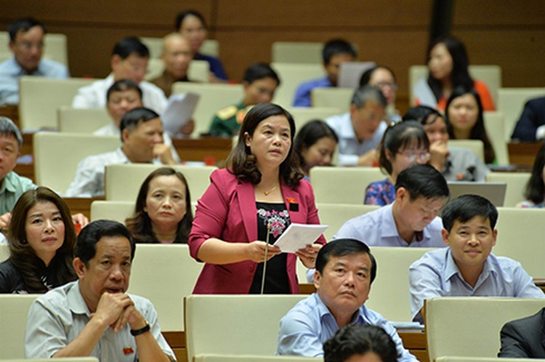Phó Thủ tướng Vương Đình Huệ trả lời chất vấn ảnh 2