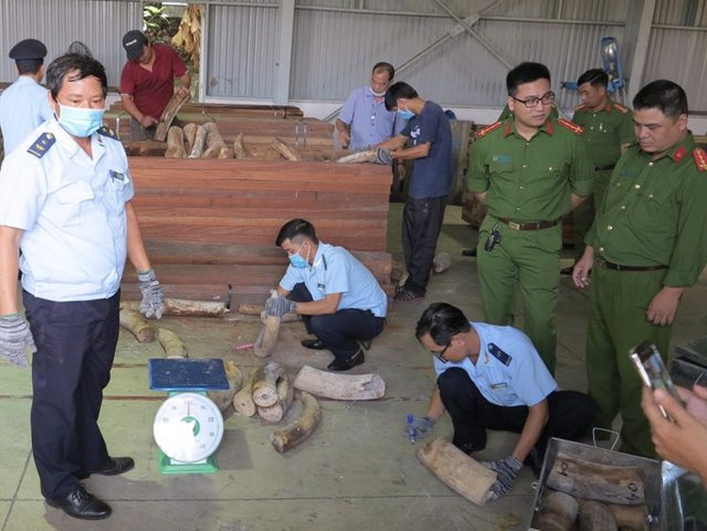 Đà Nẵng: Phát hiện hơn 9 tấn hàng nghi là ngà voi bọc gỗ để nguỵ trang ảnh 1