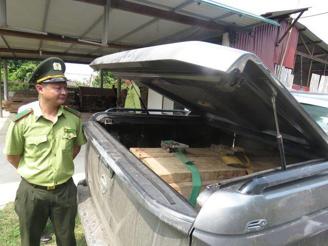 Quảng Bình: Bắt xe bán tải lắp biển giả, vận chuyển gỗ lậu ảnh 1