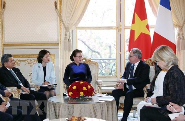 Chủ tịch Quốc hội hội đàm với Chủ tịch Hạ viện Pháp ảnh 1