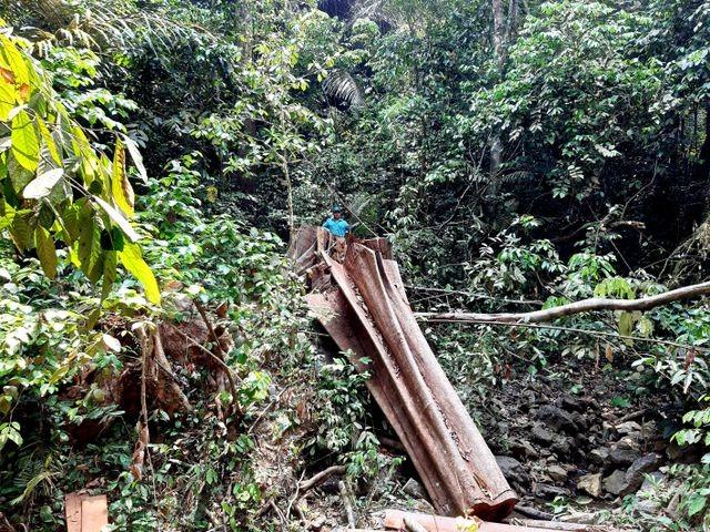 Quảng Nam: Phát hiện vụ phá rừng phòng hộ Đắk Mi ảnh 1