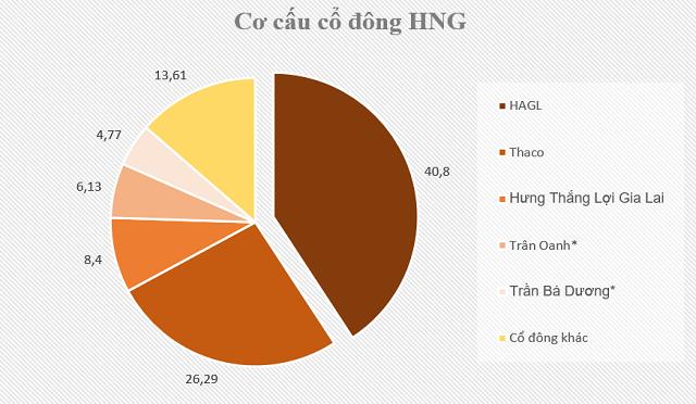 Hoàng Anh Gia Lai khẳng định HNG vẫn là công ty con dù sở hữu còn 49,2% ảnh 1