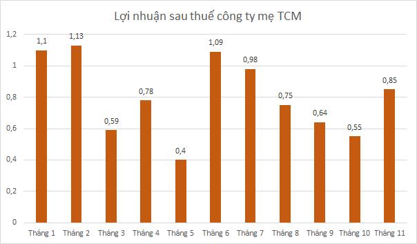 TCM doanh thu thuần tháng 11 đạt 12,8 triệu USD ảnh 1