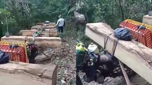"""Kon Tum: Mở rộng điều tra vụ đoàn """"lâm tặc"""" vận chuyển gỗ lậu trong đêm ảnh 1"""