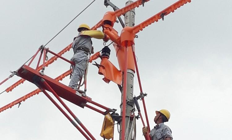 PC Khánh Hòa: Áp dụng giải pháp thi công, sửa chữa hotline 22kV bằng bệ đỡ cách điện Platform ảnh 1