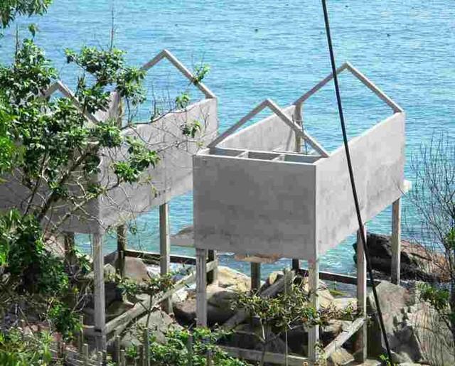 Tổng kiểm tra các dự án ven biển Quy Nhơn - Sông Cầu ảnh 1