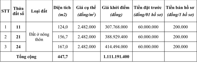Ngày 19/4/2020, đấu giá quyền sử dụng đất tại huyện Mộc Châu, tỉnh Sơn La ảnh 1