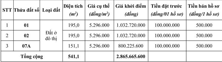 Ngày 19/4/2020, đấu giá quyền sử dụng đất tại huyện Mộc Châu, tỉnh Sơn La ảnh 7