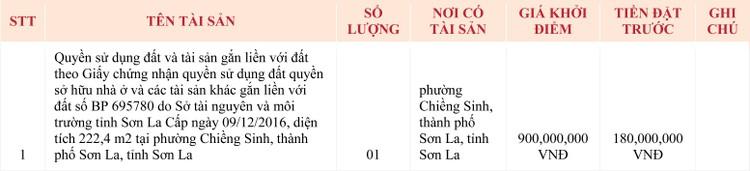 Ngày 7/5/2020, đấu giá quyền sử dụng đất tại TP.Sơn La, tỉnh Sơn La ảnh 1