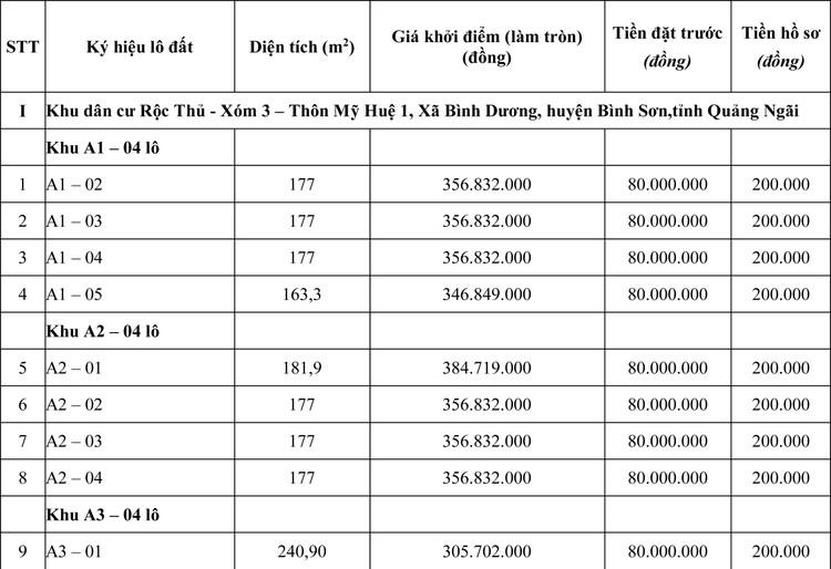 Ngày 8/5/2020, đấu giá quyền sử dụng đất tại huyện Bình Sơn, tỉnh Quảng Ngãi ảnh 1