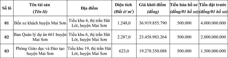 Ngày 8/5/2020, đấu giá quyền sử dụng đất tại huyện Mai Sơn, tỉnh Sơn La ảnh 1