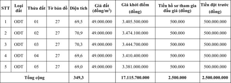 Ngày 20/5/2020, đấu giá quyền sử dụng đất tại huyện Tuần Giáo, tỉnh Điện Biên ảnh 1