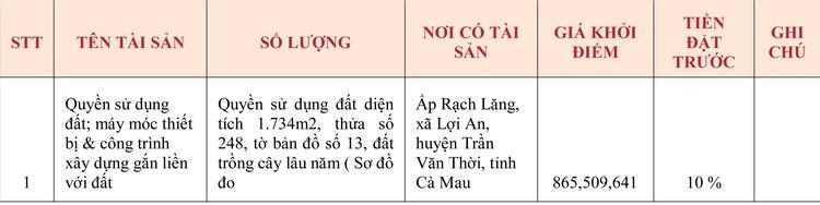 Ngày 28/5/2020, đấu giá quyền sử dụng đất tại huyện Trần Văn Thời, tỉnh Cà Mau ảnh 1