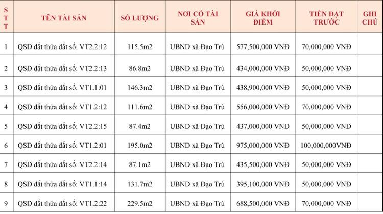 Ngày 15/5/2020, đấu giá quyền sử dụng đất tại huyện Tam Đảo, tỉnh Vĩnh Phúc ảnh 1