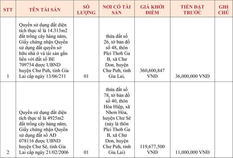 Ngày 22/5/2020, đấu giá quyền sử dụng đất tại huyện Chư Pưh, tỉnh Gia Lai ảnh 1
