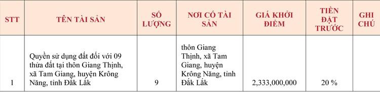 Ngày 7/5/2020, đấu giá quyền sử dụng đất tại huyện Krông Năng, tỉnh Đắk Lắk ảnh 1