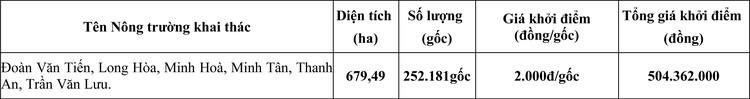 Ngày 29/5/2020, đấu giá gốc cây Cao su đã cưa cắt thanh lý tại tỉnh Bình Dương ảnh 1