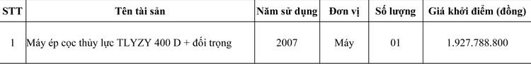 Ngày 1/6/2020, đấu giá máy ép cọc thủy lực tại TPHCM ảnh 1