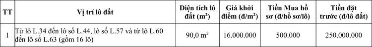 Ngày 16/6/2020, đấu giá quyền sử dụng đất tại huyện Nam Sách, tỉnh Hải Dương ảnh 1