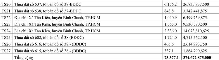 Ngày 15/6/2020, đấu giá quyền sử dụng đất tại huyện Bình Chánh, TP.HCM ảnh 2