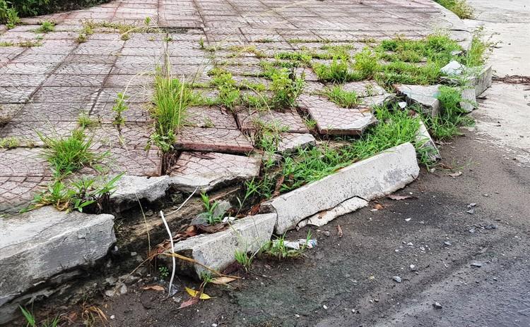 """Ninh Bình: Tiếp tục hủy đấu giá khu """"đất vàng"""" sau hơn 10 năm bỏ hoang ảnh 2"""