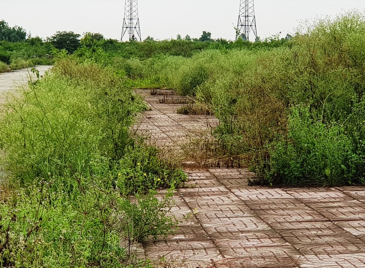 """Ninh Bình: Tiếp tục hủy đấu giá khu """"đất vàng"""" sau hơn 10 năm bỏ hoang ảnh 3"""