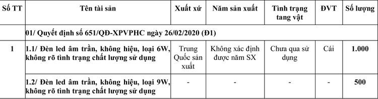 Ngày 30/6/2020, đấu giá hàng hóa tịch thu sung quỹ tại TPHCM ảnh 1