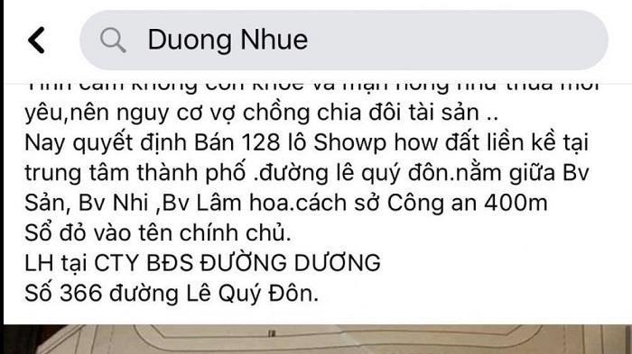 """Thái Bình hủy kết quả đấu giá khu đất vàng từng được đại gia Đường """"Nhuệ"""" rao bán ảnh 1"""